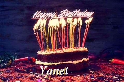 Yanet Cakes
