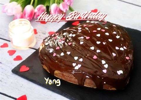Happy Birthday Yang