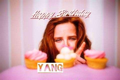 Happy Birthday Cake for Yang