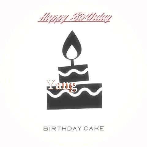 Yang Cakes