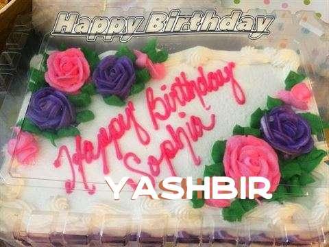 Yashbir Cakes