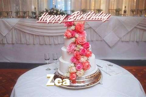 Happy Birthday to You Zea