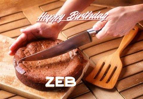 Happy Birthday Wishes for Zeb
