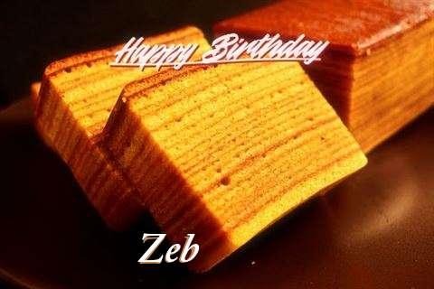 Wish Zeb