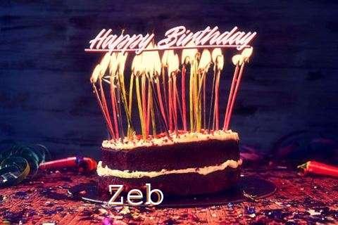 Zeb Cakes