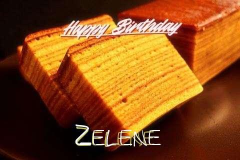 Zelene Birthday Celebration
