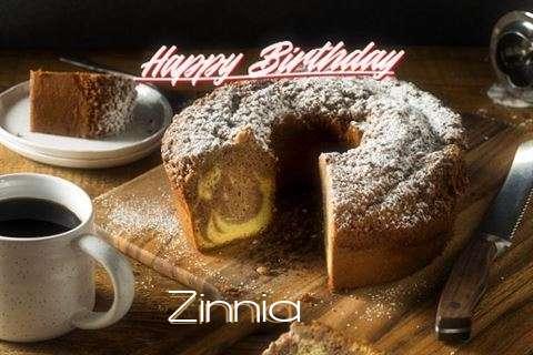 Happy Birthday to You Zinnia
