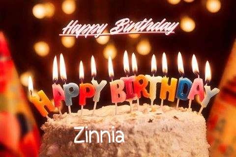 Wish Zinnia